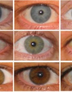 Often confused with hazel eyes amber tend to be  solid golden or copper color without flecks of blue green typical also what are your exactly rh edow