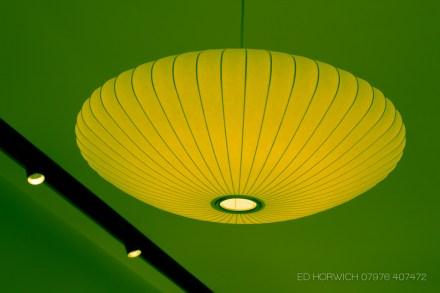 edhorwich-8605