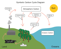 Energy Transfer and the Carbon Cycle Worksheet - EdPlace