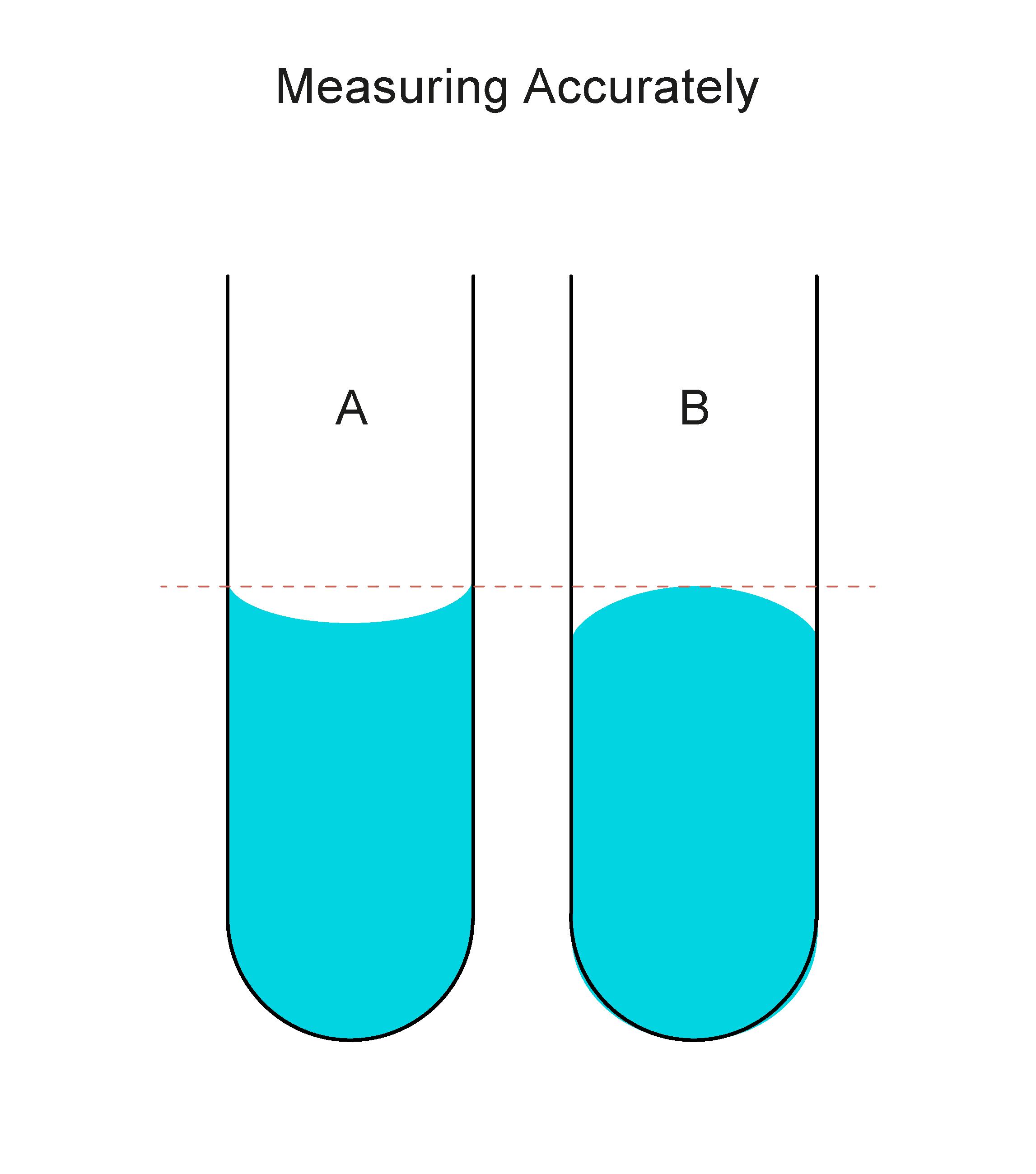 Measuring Accurately Worksheet