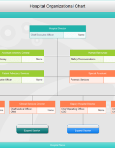 Commom hospital organizational chart also free download charts rh edrawsoft