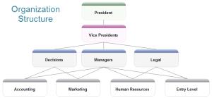 Organizational Structure Diagram Software