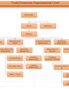 University academic management org chart trade enterprise organizational also hierarchical rh edrawsoft