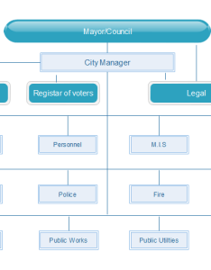 Municipal matrix structure diagram also advantages disadvantages  examples rh edrawsoft