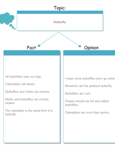 Butterfly fact and opinion examples also chart graphic organizers solutions rh edrawsoft