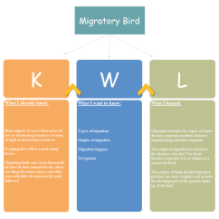 Network Diagram Software For Mac Amana Fridge Wiring Migratory Bird Kwl Chart Examples And Templates