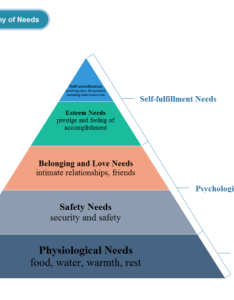 Needs pyramid chart examples also diagram marketing charts solutions rh edrawsoft