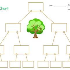 Blank Tree Diagram Graphic Organizer S Plan Wiring Worcester Boiler Chart Free Templates