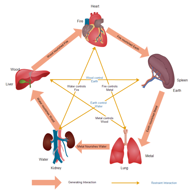 what is a network diagram and why it important 5 wire thermostat wiring human organs clipart
