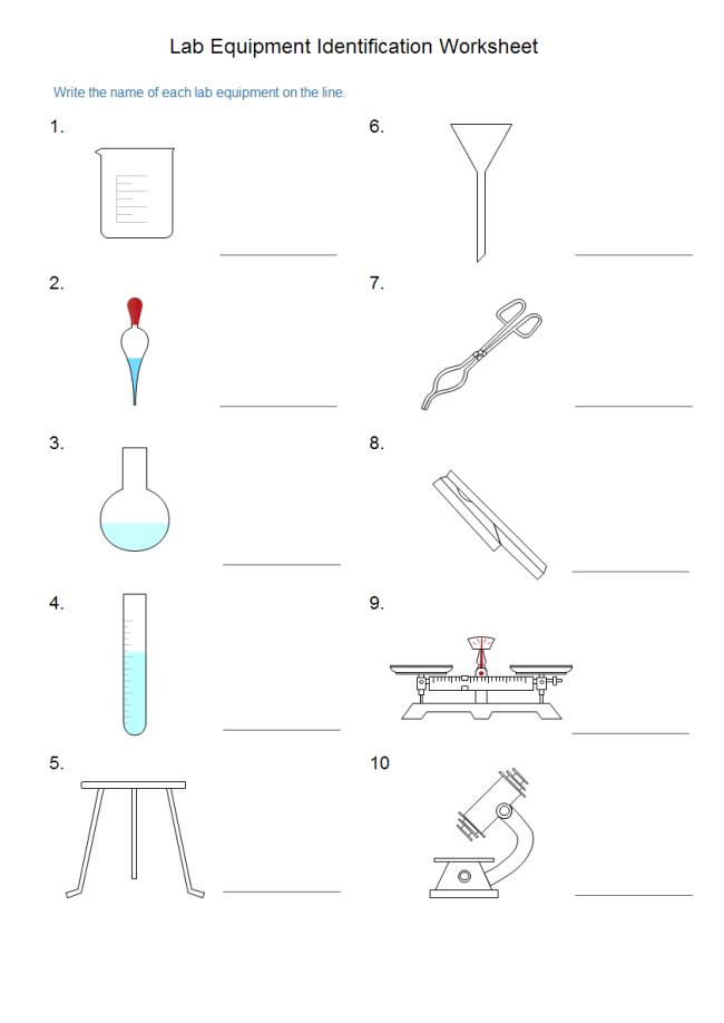 Identifying Lab Equipment Worksheet. Worksheets
