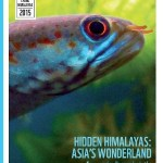 Hidden Himalayas : Asia's Wonderland Report 2015