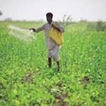 Import of fertilizers