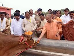 CM Destitute Cow Participation Scheme