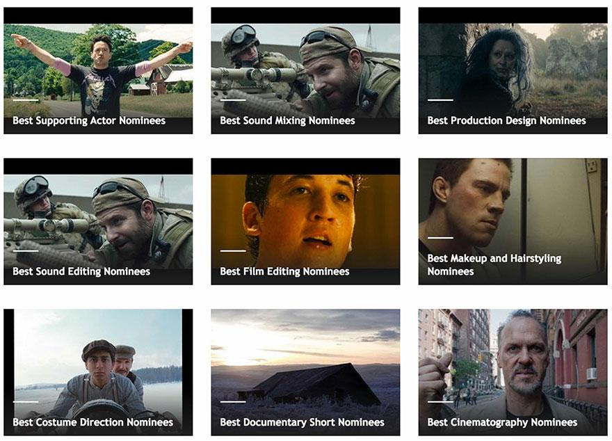 The-Oscars-2015-_-Academy-Awards-2015-Eduardo-Angel_timg