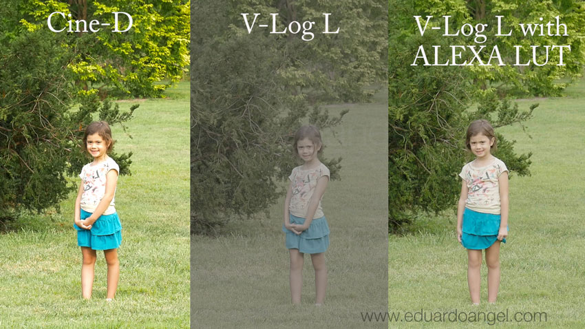 Panasonic-GH4-V-Log-L-Profile-Comparison-Tests-Eduardo-Angel-Visuals__010_850