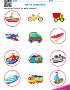 Water transport also free printable birds and insects worksheets for pre   kindergarten rh edubuzzkids