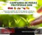 Santa Terezinha promove Campanha de Mudas Frutíferas