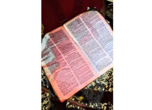 Bíblia foi encontrada em meio aos escombros na parte de trás da casa (Foto: Fábio Junkes / OCP News)