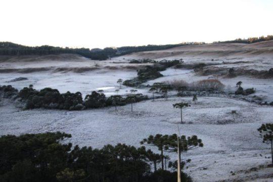 Registro feito em São Joaquim, na Serra catarinense, no inverno de 2020 (Foto: Mycchel Legnaghi / Divulgação)