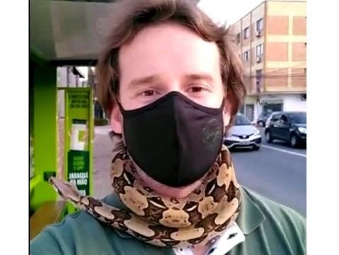 Cachecol? Não. É cobra mesmo: Christian Raboch é biólogo da Fujama em Jaraguá do Sul (Foto: Reprodução vídeo / Divulgação)
