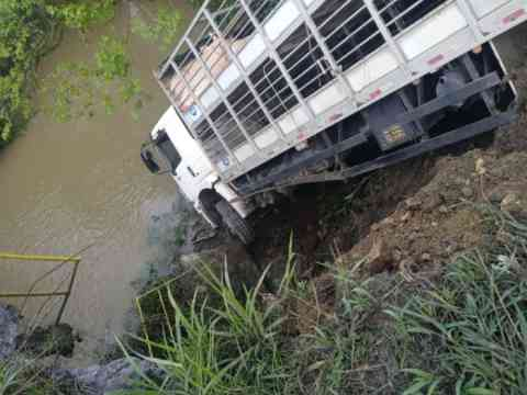 Caminhão carregado com porcos sai da pista e quase cai em rio no interior de Salete