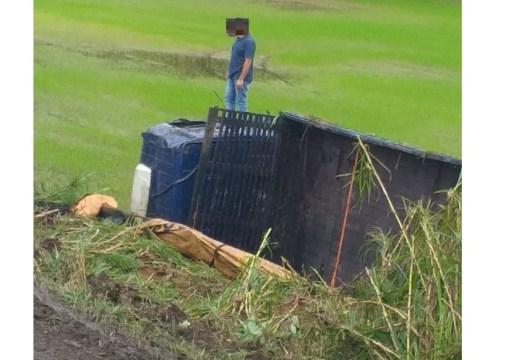 Caminhão sai da pista e tomba às margens da BR-470, em Pouso Redondo