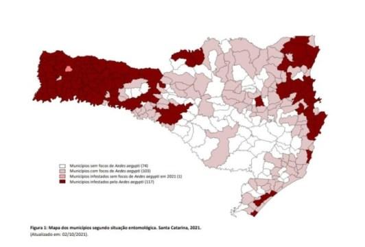 Santa Catarina enfrenta aumento de 75% nos focos do mosquito da dengue
