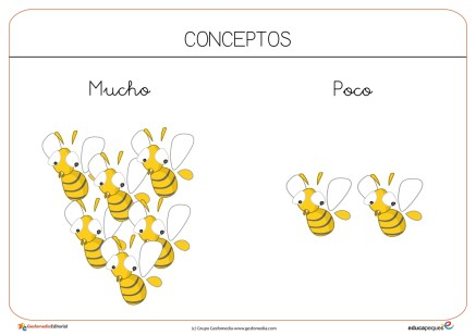 abejas-01