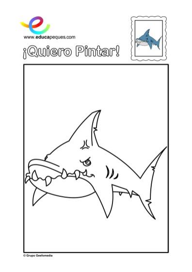 colorear_tiburon