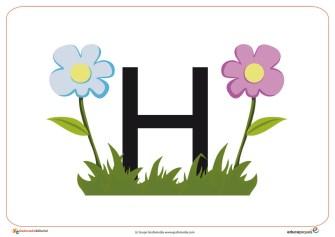 H primavera