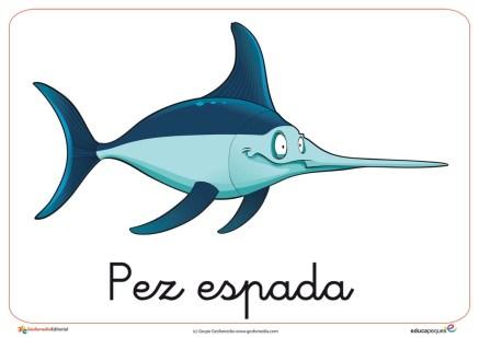animales marinos 12