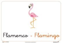 flamenco ficha ave
