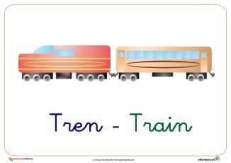 tren ficha transporte