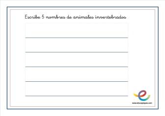 Animales invertebrados 03