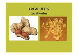 frutos secos y frutas de otoño_013