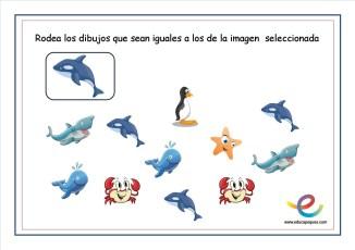 Atención imagenes iguales 11