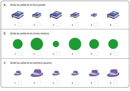 conceptos 15