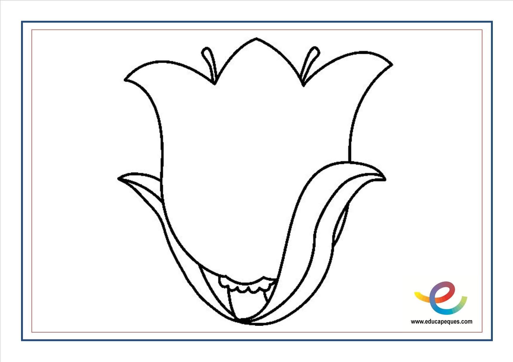 Lo Mejor De Dibujos Para Colorear Flores Silvestres