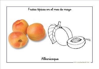 frutas_mayo02
