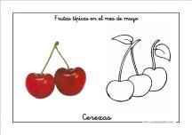 frutas_mayo03