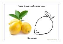 frutas_mayo04