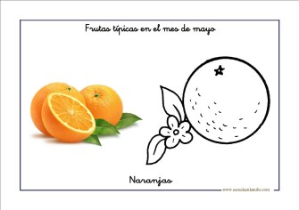 frutas_mayo07