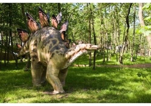 dinosaurios 30