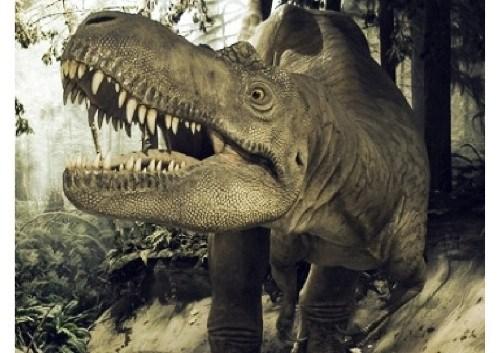 dinosaurios 33