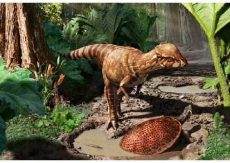 imagenes dinosaurios parte 2_025