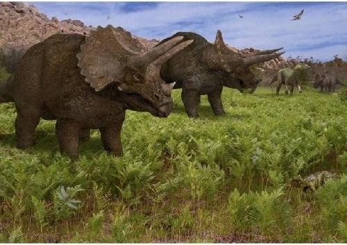 imagenes dinosaurios parte 2_042