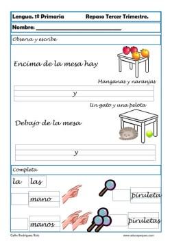 lengua primaria 17