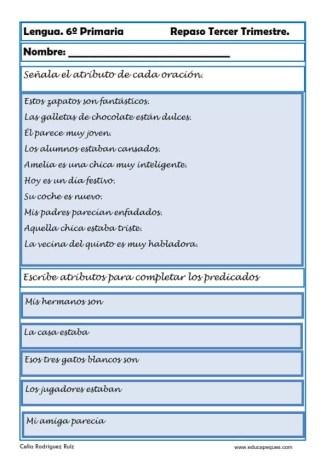 ejercicios lengua sexto primaria 13