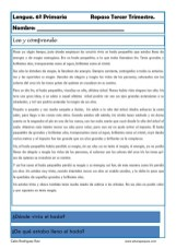 ejercicios lengua sexto primaria 14