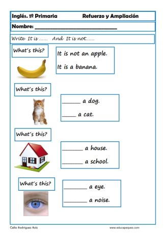Inglés primaria 12
